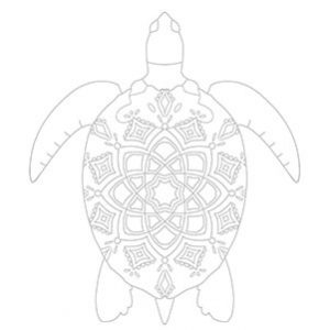 World Turtle Day colouring sheet