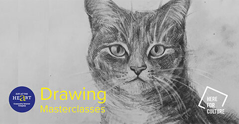 Cat drawing for stage 1 of drawing masterclasses
