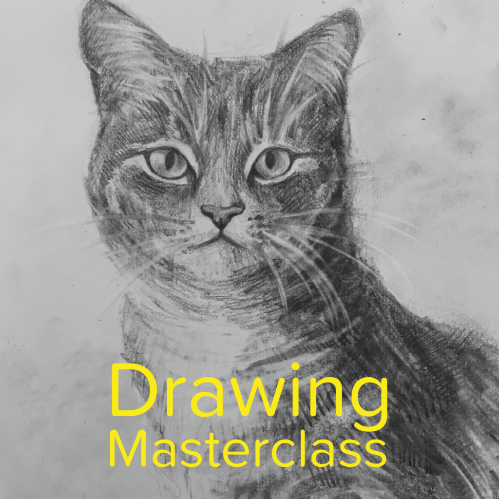 Drawing Masterclasses Gallery Drawing of a Tabby Cat