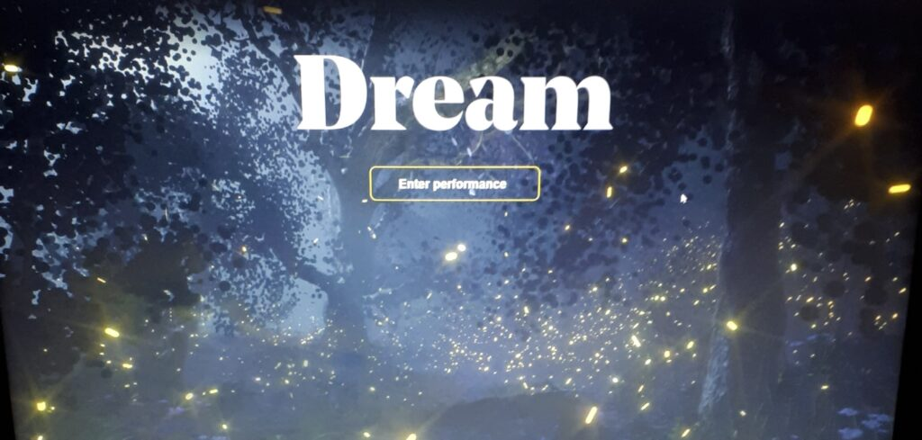 Photo of a computer screen for the 'Dream' performance